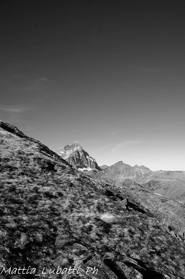 Il Monviso dal sentiero per la cima